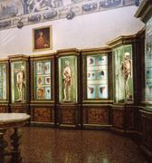 Dodici Università italiane mettono in rete i loro musei scientifici
