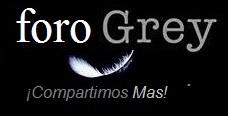 Foro Grey Logo