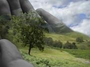 natureza em nossas mãos