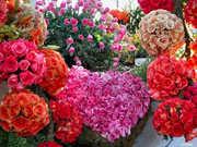 flores098