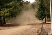 Take Action Now on Gas Powered Leaf Blower Pollution: Attend Walnut Creek City Council Meeting and Sign Petition