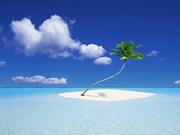 ilha coqueiro