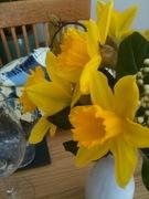 Spring has sprung....Round 1