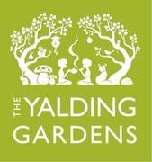 National Apple Day - Hari Covert @ Yalding Gardens