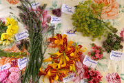 Secret Garden club: edible flowers