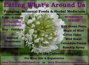 """Eating What's Around Us"" Workshop #1: Wild Green Pesto"