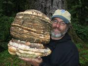 Paul Stamets: Mycellium Running - A Multi-Media Presentation & Book Signing