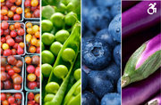 Embracing Food Justice: Transforming Our Food Systems from Seed to Table