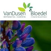 Medicinal Plants for the Home Garden