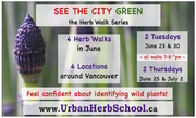 See the City GREEN - Vancouver Herb Walk Series