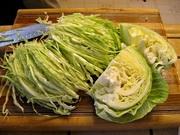 Sauerkraut Fermentation