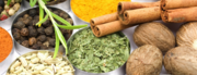 Heal Your Body! : Indian food made vegan, raw, easy and fun!