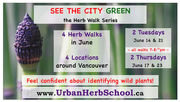 See the City GREEN - Vancouver Herb Walks - June 2016