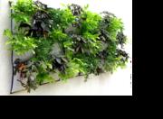 *Intro to Vertical Gardening (low cost workshop)