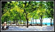 Морската градина - Варна, художник Пламен Монев  2