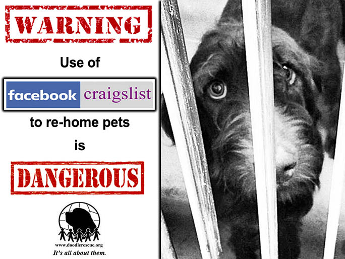 WHY USE OF CRAIGSLIST, FACEBOOK & SOCIAL MEDIA TO RE-HOME