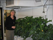 In the South Pole Zucchini Growth Chamber