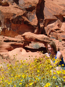 meagan valley of fire