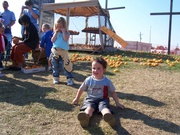Taking a rest at the pumpkin patch