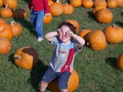 Seph at the Pumpkin Patch