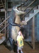 Brogan at the alligator hatchery