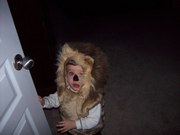 A sweet lion!