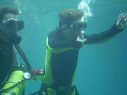 Shark Bait Boys Sea World Dive - 12-14 Dec 08 Dive 1 044 1