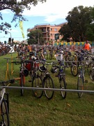 Bike parking at Surry Hills festival