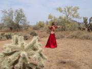 20080514-Desert (14)