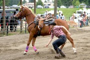 Langley Rodeo
