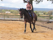 Anzac schooling at home april 08