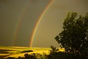 2 Rainbows