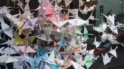 Paperbirds