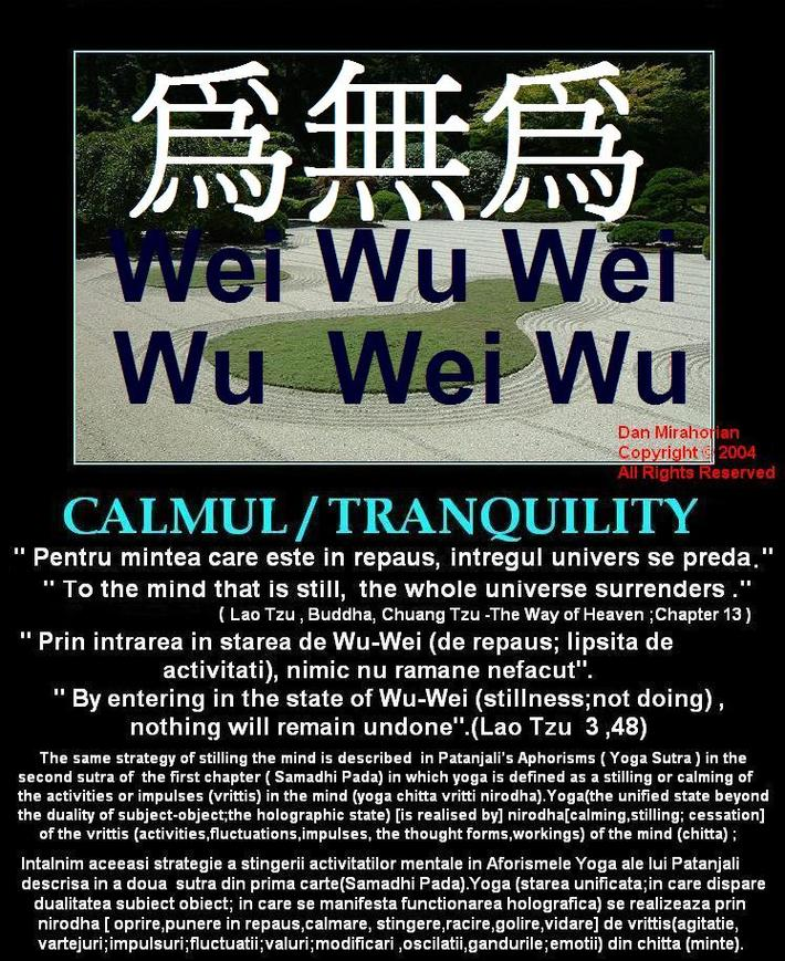 Stiinta zeilor /The Science of Gods /La Science des Dieux Wei Wu Wei Invulnerabilitatea si functionarea holografica