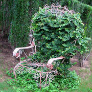 container-gardening-picture-of-vertical-garden-with-old-chair-800x800