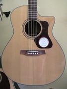 walden ac. guitar
