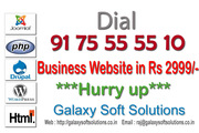 5 Pages business website in 2999 Rs only