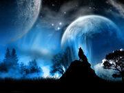 werewolf-1024x768 0