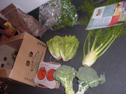 Our veggie box