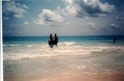 cancun horses