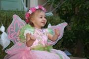 Sophia fairy