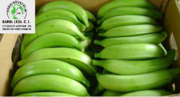 Productos Agroindustrial Karol Ltda C.I
