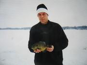 fish 013