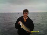 Leech Walleye