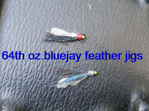 BlueJay Feather Jigs 64th oz.