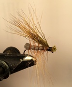 Deer Tail Caddis