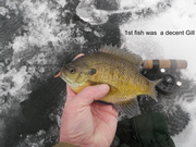 2015 Ice Fishing