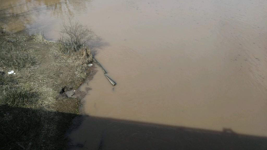Muddy Wixom Lake... A period of transition