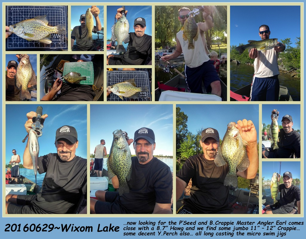 20160629-TODAY'S CATCH... ALL CPR'ED