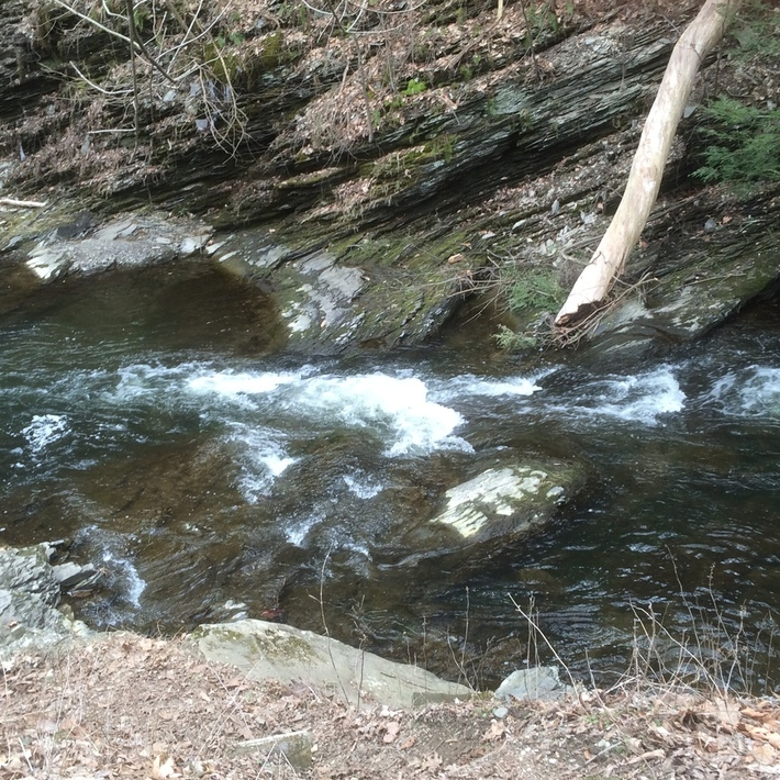 Clove Brook